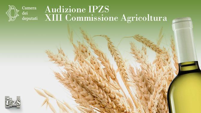 Audizione IPZS Camera