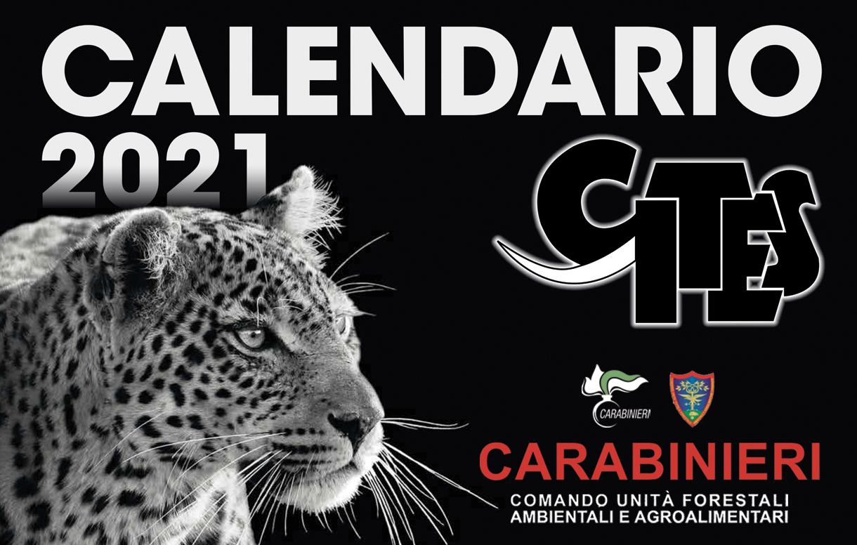 Calendario CITES 2021: conservazione ed educazione ambientale al centro della nuova edizione